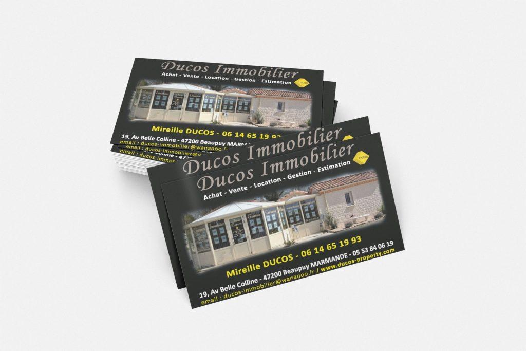 Carte de visite Ducos immobilier